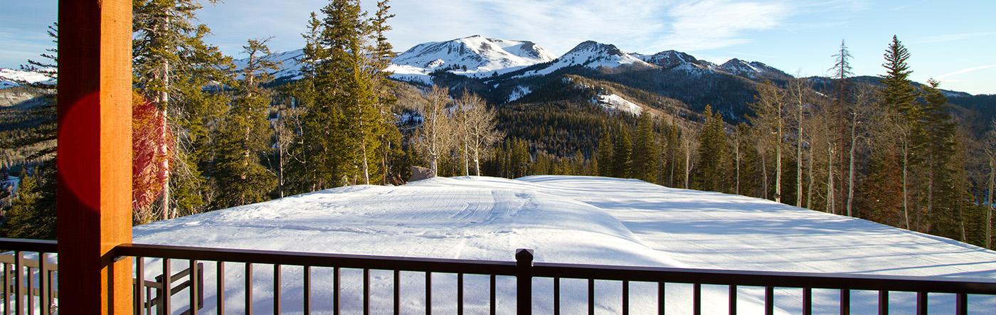 Winter Vacation Homes